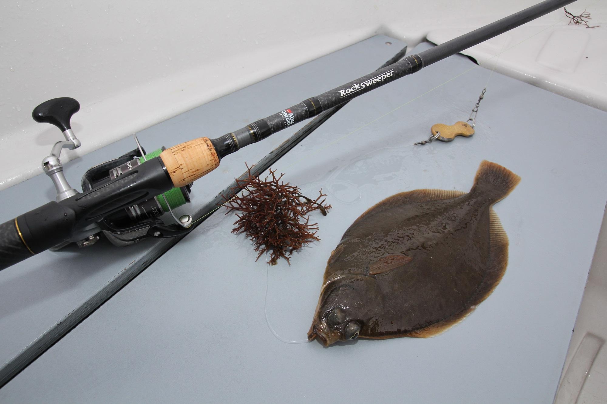 Plattfischangeln in Norwegen bringt Laune: zum Beispiel auf Klieschen
