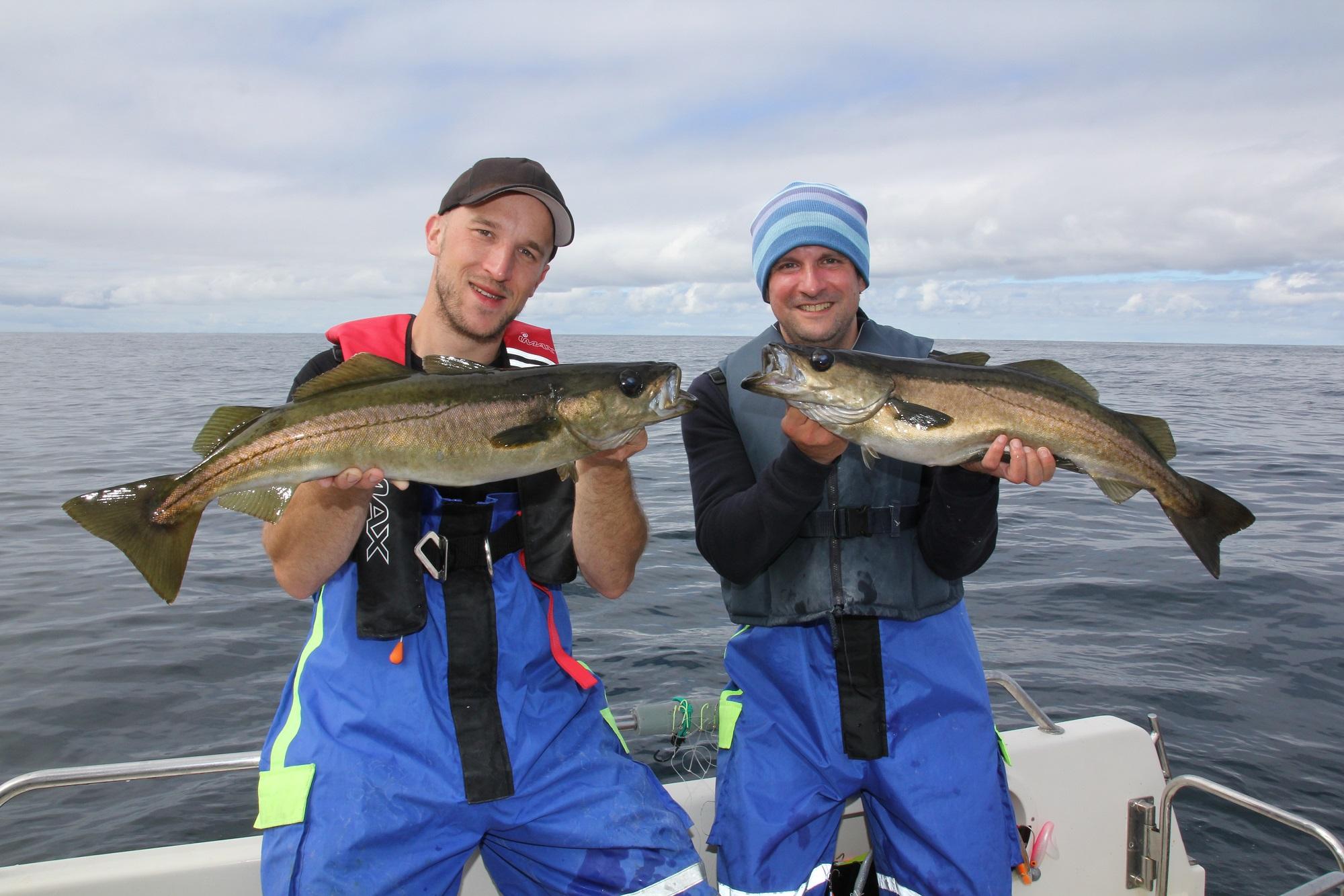 Zwei glückliche Angler mit Pollacks.