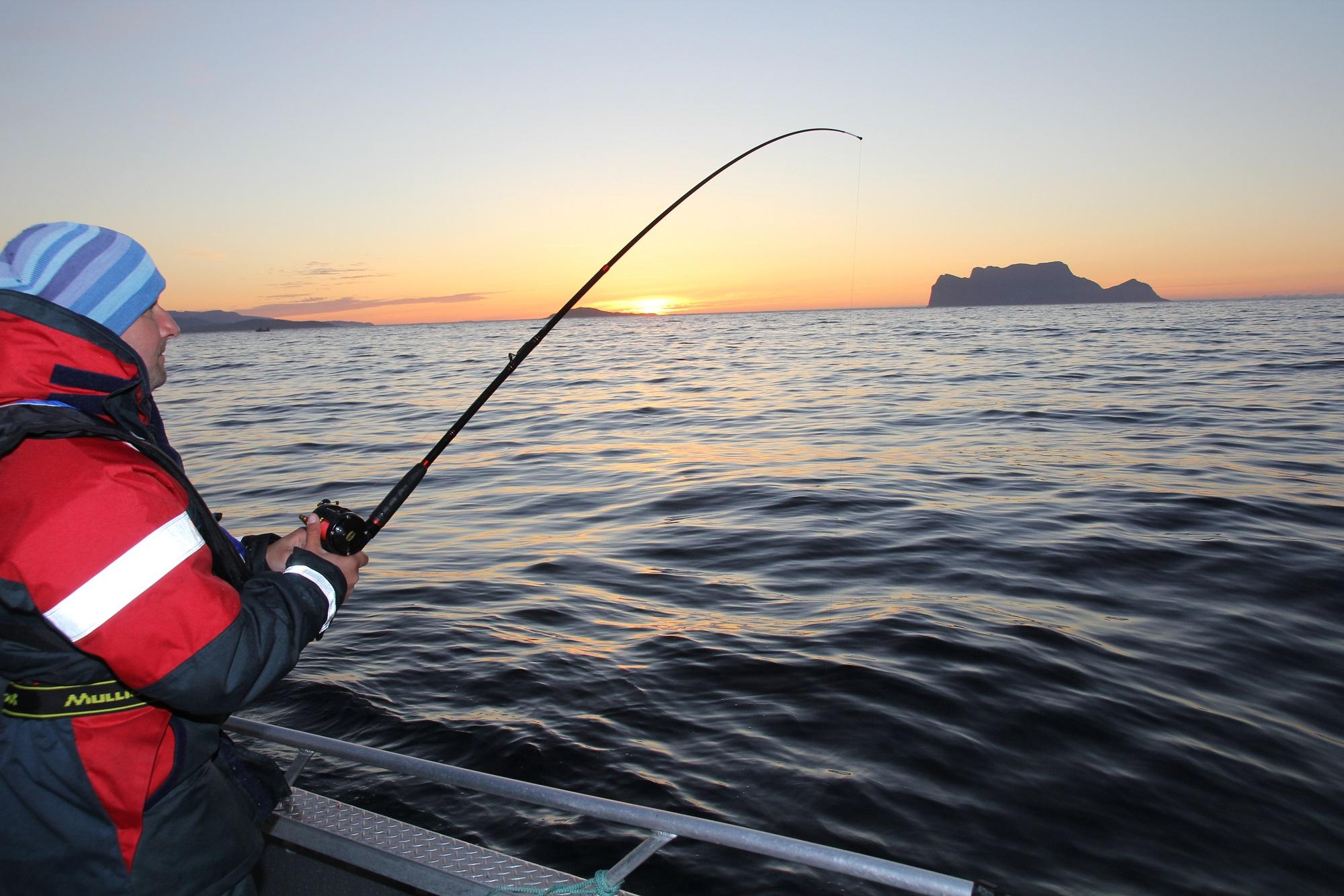 Im Sommer wird es nie richtig dunkel in Nordnorwegen. Die Sonne verschwindet nur kurz hinterm Horizont