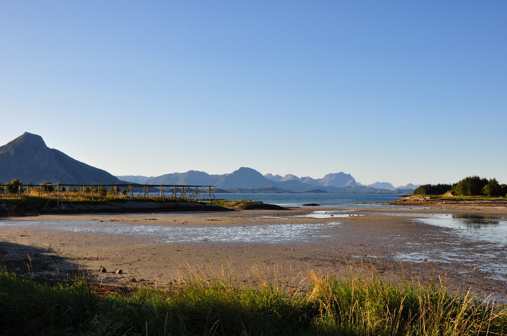 Bei Ebbe lassen sich in Norwegen an manchen Stellen auch Wattwürmer finden