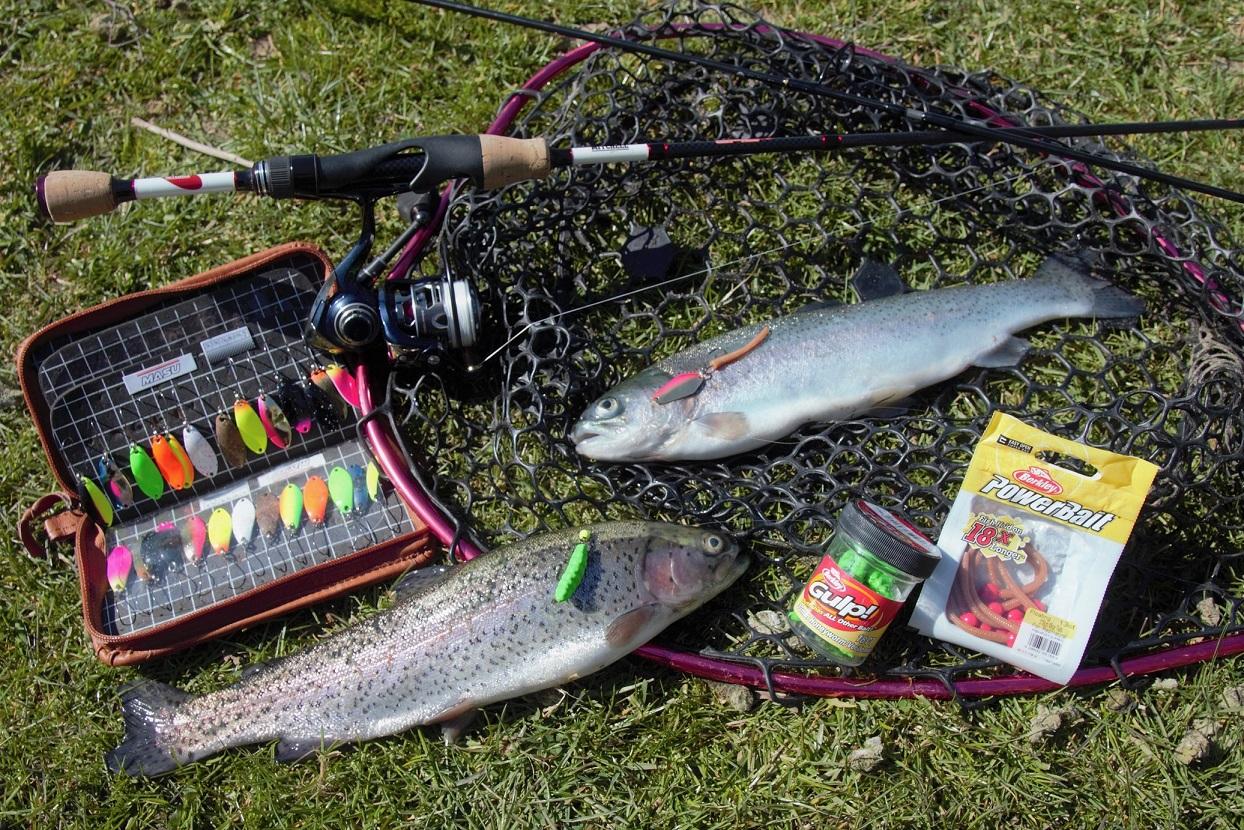 9. Forelle Spoon vs. Gummi_Catch More Fish.jpg