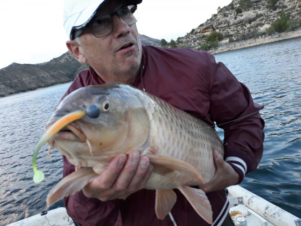 Ebro 2 10.6.19.jpeg