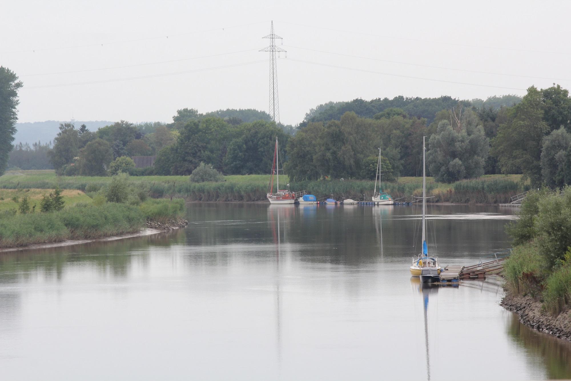 Kaulbarsche kommen in den Flussunterläufen vor, die von der Tide beeinflusst werden (Foto: Jesco Peschutter)