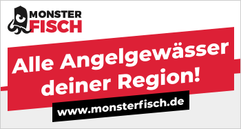 monsterfisch-banner-2.png