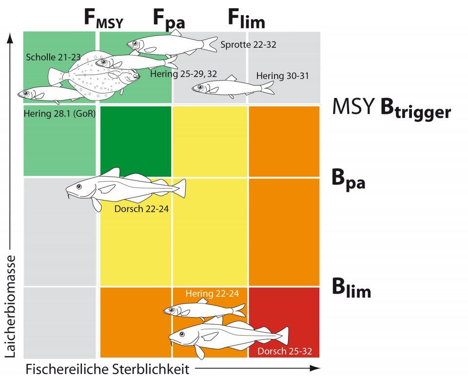 Ostsee_Bestandsübersicht_thuenen_1920px.jpg