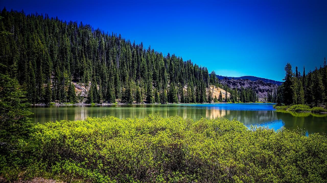 todd-lake-1721559_1280.jpg