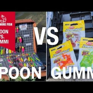 SPOON vs. GUMMI | Aktiv am Forellensee | Welcher Köder fängt besser? | Catch More Fish